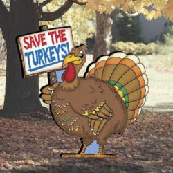 Protesting Turkeys