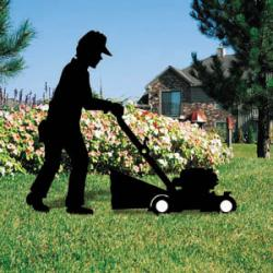 Mowing Mania (Push Mower)